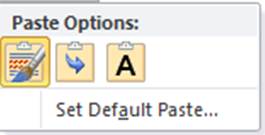 Paste_Options_Box